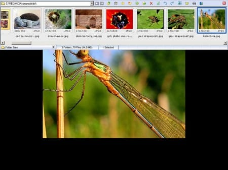 FastStone Image Viewer 4.5 Rus